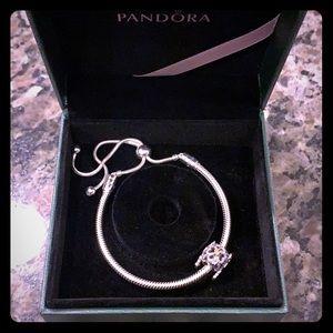 Adjustable Pandora Bracelet & Charm
